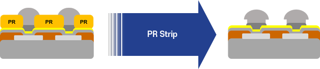 PR Stripper